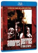 Blu-Ray: Amores perros: Láska je kurva