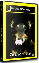 DVD: NG - Ze života psů