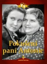 DVD: Pokušení paní Antonie